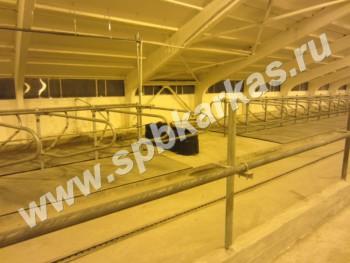 Беспривязное содержание скота, метод содержания крупного рогатого скота в скотных...  Территория поставок.